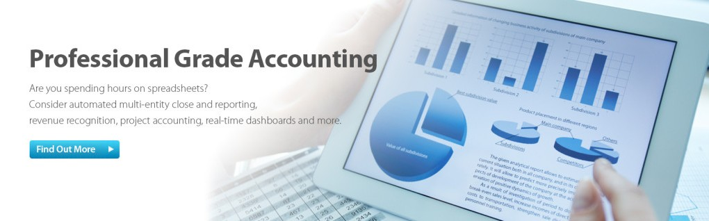 Professional Grade Accounting Software